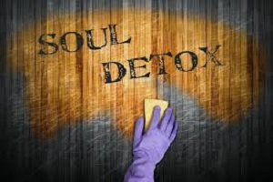 Soul Detox Guide-to-Go