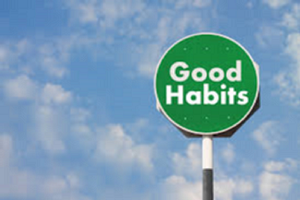 The Habit Champion Guide-to-Go